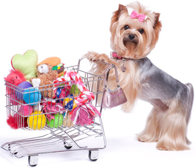 Image result for pet supplies